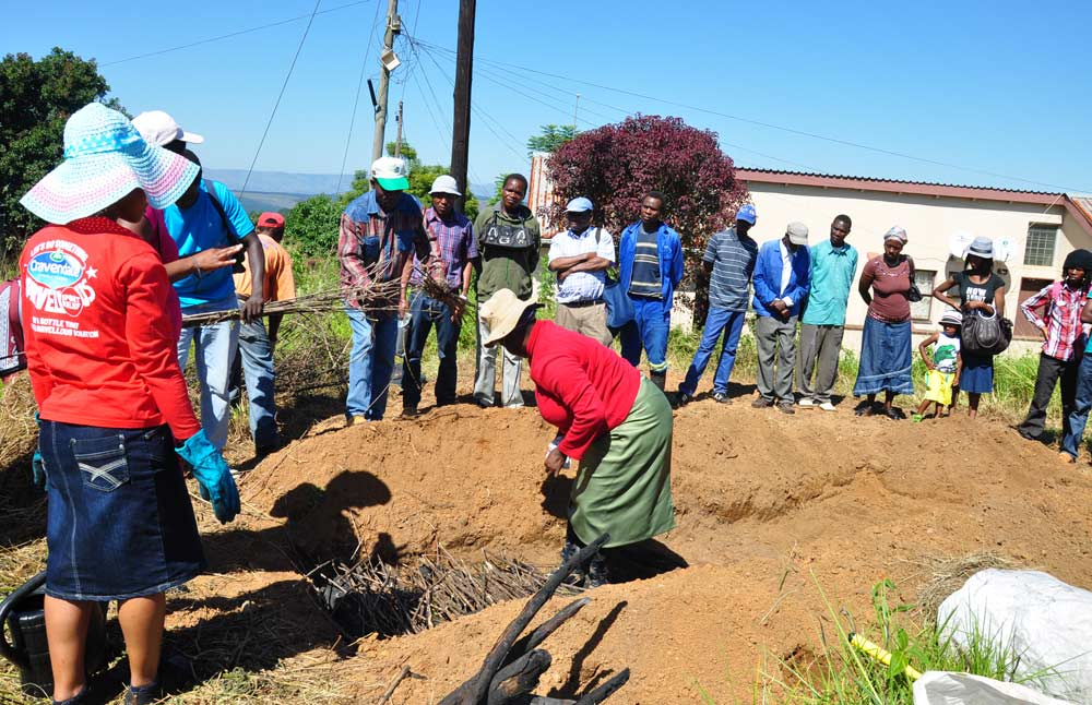 Demo-garden for the patient of the testing center for HIV/AIDS in Piggs Peak Hospital.